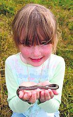Erin Brady holding a slow worm