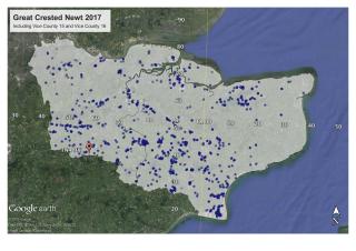 Gcn distribution 2017